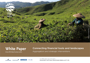 Connecting financial tools and landscapes: Aggregators and strategic interventions