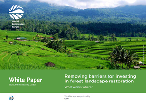 Removing barriers for investing in forest landscape restoration: What works where?