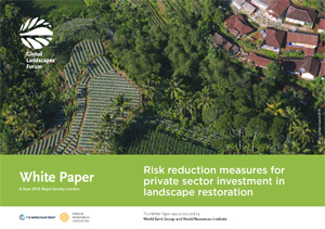 Risk reduction measures for private sector investment in landscape restoration