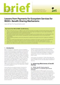 Lessons from Payments for Ecosystem Services for REDD+ Benefit-Sharing Mechanisms
