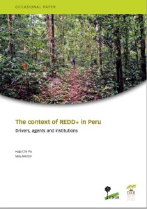The context of REDD+ in Peru: Drivers, agents and institutions