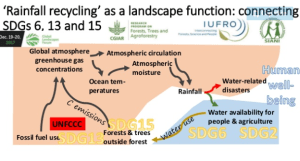 Rainfall Recycling as a landscape function: Connecting SDGs 6,13 and 15