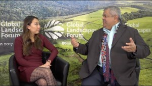 The role of finance in sustainable land use
