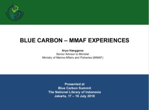 Blue Carbon – MMAF Experiences