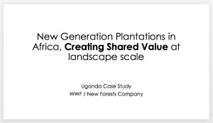 New Generation Plantations in Africa, Creating Shared Value at landscape scale