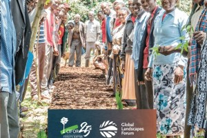 Communities restoring landscapes: Stories of resilience and success