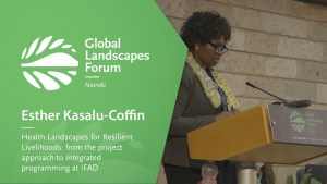 Health Landscapes for Resilient Livelihoods: from the project approach to integrated programming at IFAD