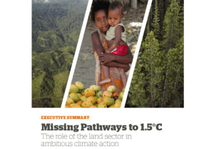 Missing Pathways to 1.5 C: the role of the land sector in ambitious climate action