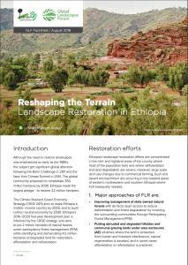 Reshaping the Terrain: Landscape Restoration in Ethiopia