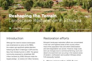 Reshaping the Terrain: Landscape Restoration in Ethiopia