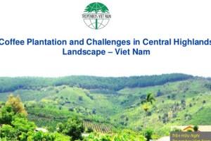 Coffee Plantation and Challenges in Central Highlands Landscape – Viet Nam
