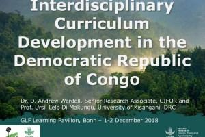 Interdisciplinary Curriculum Development in the Democratic Republic of Congo