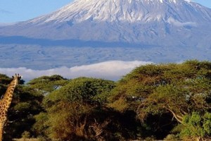 White Mountain: Maasai vow to restore the lost ice cap of Mount Kilimanjaro
