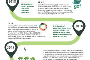 TIMELINE: GLF Salutes U.N Decade on Ecosystem Restoration (2021 -2030)