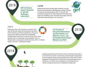 TIMELINE: Road to U.N Decade on Ecosystem Restoration (2021 -2030)