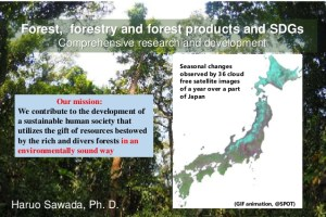 Forest, forestry and forest products and SDGs: Comprehensive research and development