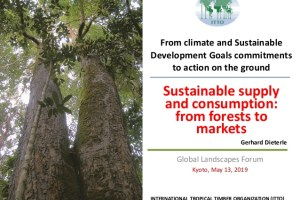 Sustainable supply and consumption: from forests to markets