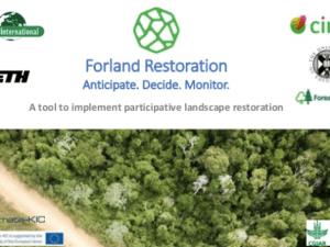 Forland Restoration: Anticipate – Decide – Monitor