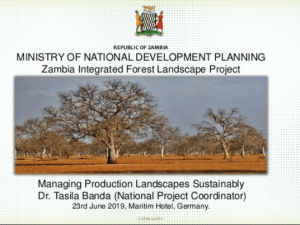 Managing Production Landscapes Sustainability