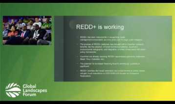 Accelerating the Implementation of REDD+ and Results based Payments in Africa