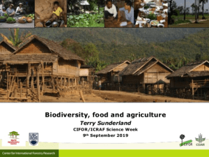 Biodiversity, food and agriculture