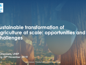 Sustainable Transformation Of Agriculture at Scale: Opportunities and Challenges