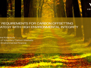 Key Requirements for Carbon Offsetting Strategy with High Environmental Integrity