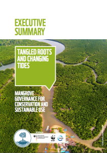 Tangled Roots and Changing Tides: Mangrove governance for conservation and sustainable use