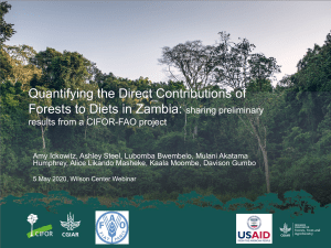 Quantifying the Direct Contributions of Forests to Diets in Zambia: sharing preliminary results from a CIFOR-FAO project