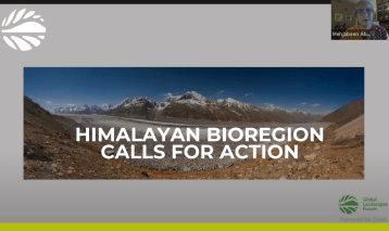 The Hindu Kush Himalayan Call for Action: Maintaining the 'Pulse of the Planet'