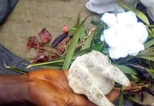 Video Of Man Caught Making Incantations With Fetish Items At A Cemetery In Rivers State