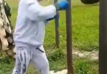 Video Of 82 Years Old Alaafin Of Oyo Showing Off His Boxing Skills In An Open Field