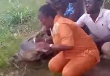 Video Of Crocodile Attacking Woman Who Tried To Take Selfie With It In Ghana