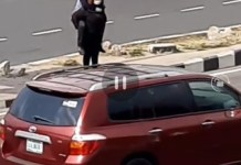 Video Showing A Woman Romantically Carries Her Boyfriend On The Back To Cross An Express Road