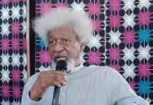 Herders-farmers Crisis Could Lead To Civil War If We Don't Act - Wole Soyinka