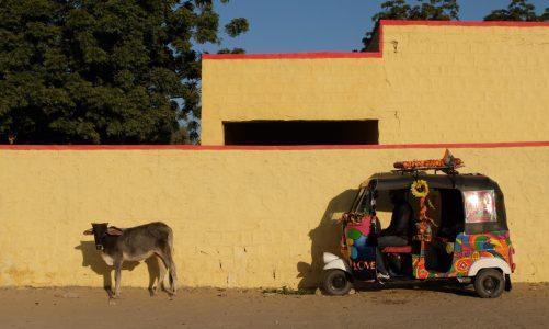 Adventure Travel: The Rickshaw Run