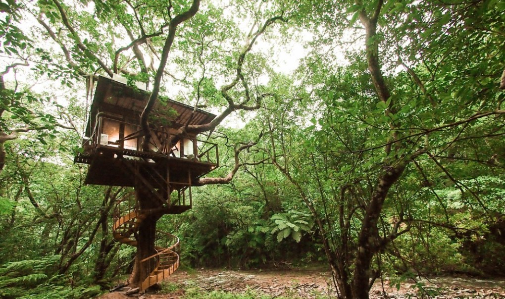Treehouse hotel in Japan, sustainable and eco-friendly tourism at it's best