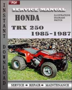 Honda TRX 250 1985-1987 global