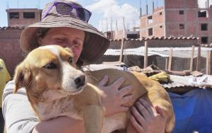 Volunteer with rescued dogs in Peru