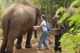 Volunteer with mahout and elephant
