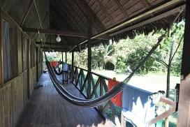 Peruvian Amazon wildlife rescue centre