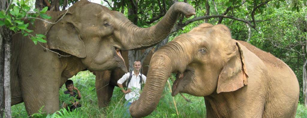 Cambodia Elephant Sanctuary Founder with Elephants