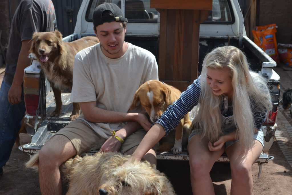 Volunteers with dogs in Peru