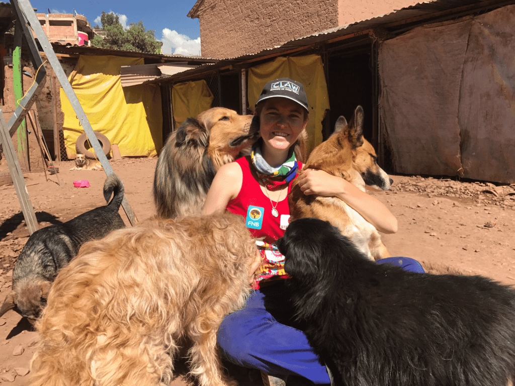 Volunteer at the Peru Shelter