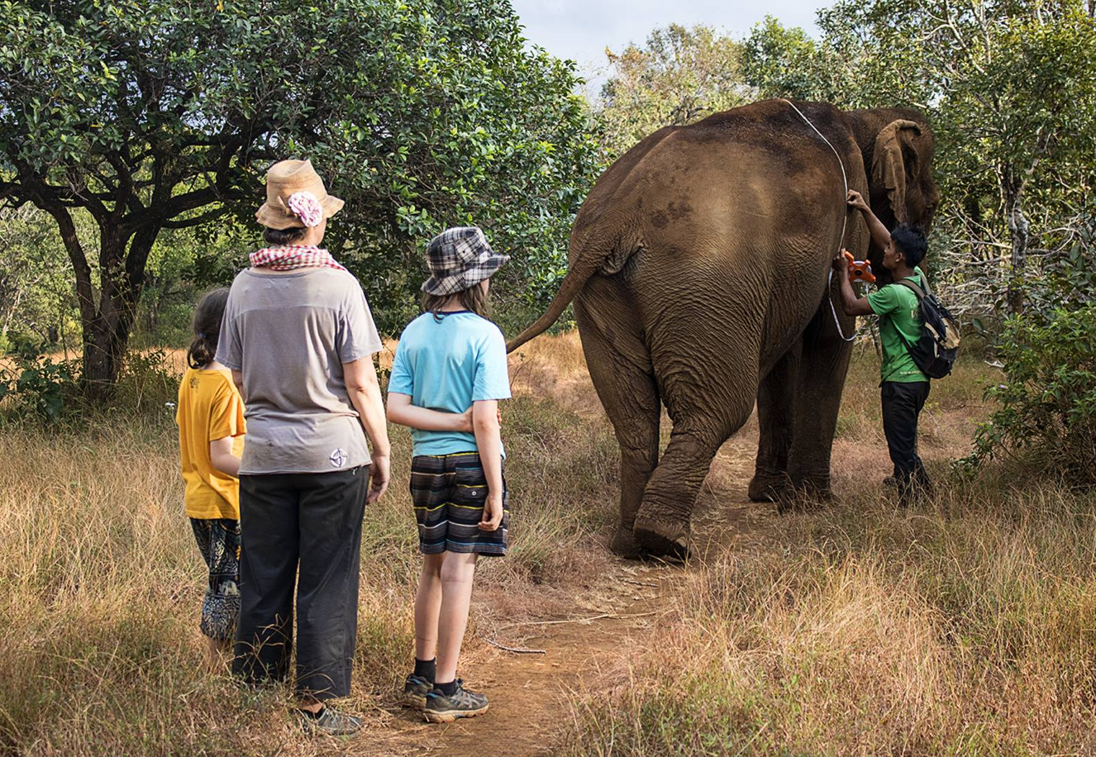Caring for the elephants at the sanctuary