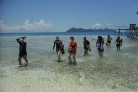 Digital Detox at the Borneo Marine COnservation Project