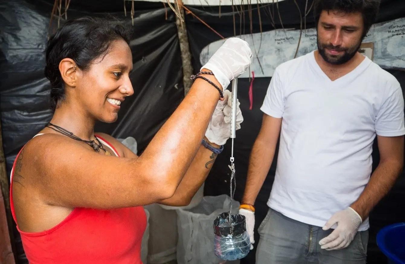 Sea Turtle Volunteering in Costa Rica Caribbean