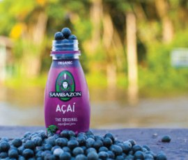Saving the RainforestSambazon has helped protect the rainforest by harvesting its acai berries, making the trees too valuable to cut down.