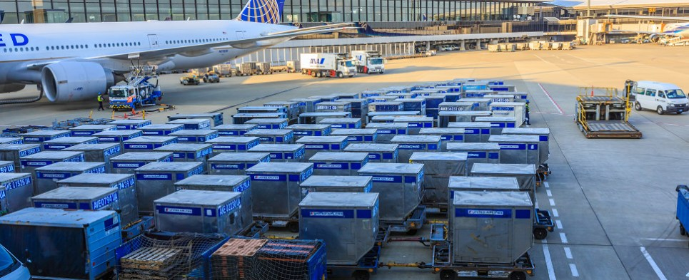 United Airlines expansion of its temperature control network allows the carrier to handle more air cargo shipments of exports and imports in international trade.