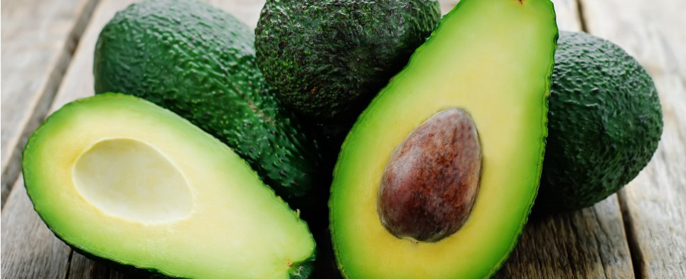 New avocado business means port of Savannah will be handling more shipments of export caergo and import cargo in international trade.